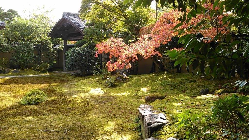 清凉寺 庭園
