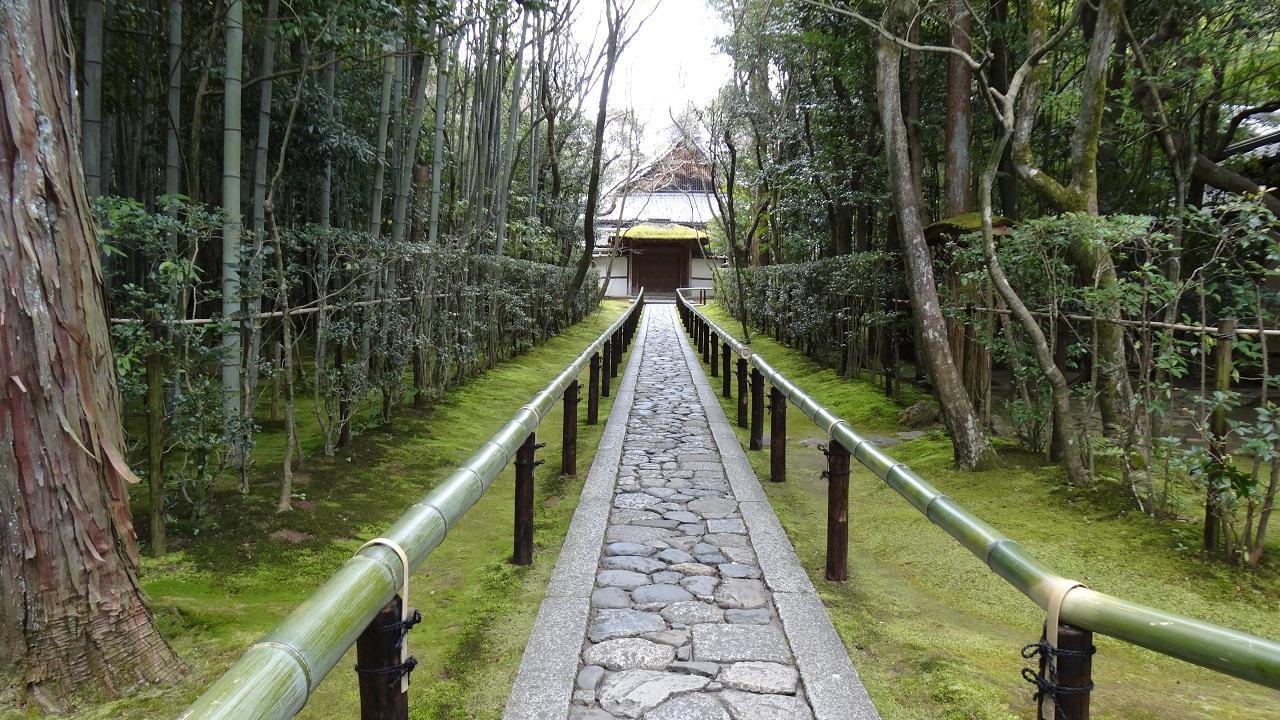 幻想的な癒し空間の御朱印~高桐院