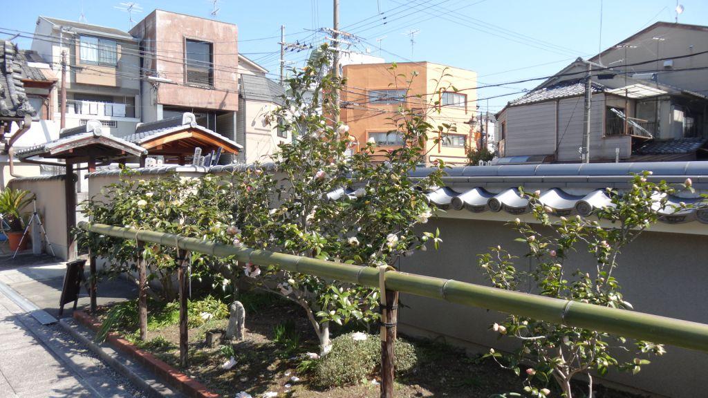 椿寺 地蔵院