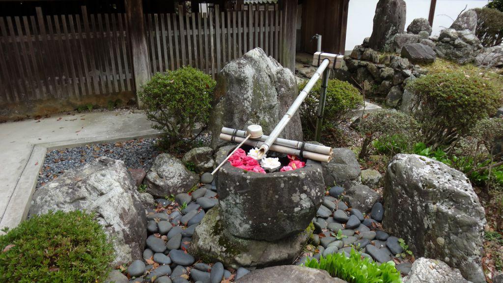 なりひら桜 2016