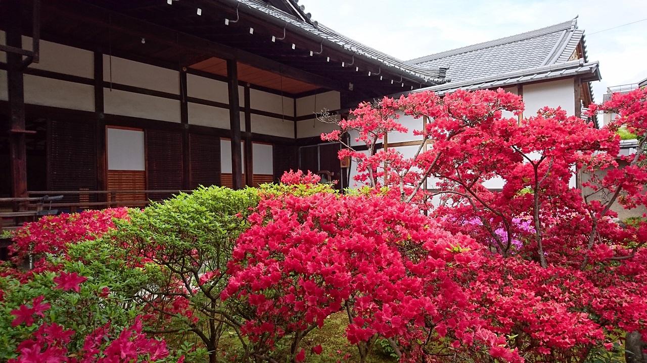 春の庭園特別公開2016~正伝永源院