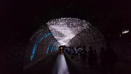 京の七夕 光の天の川