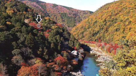 嵐山公園 展望台からの大悲閣 千光寺