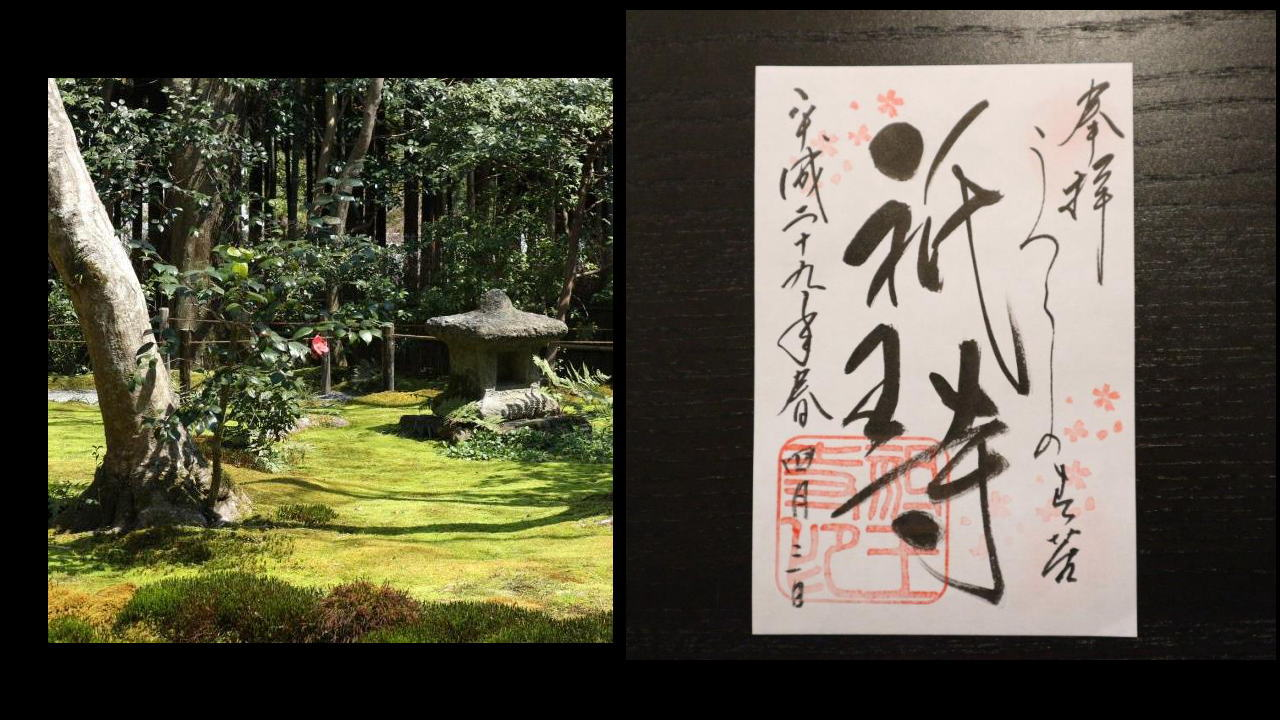 4月1か月限定 桜の御朱印~祇王寺