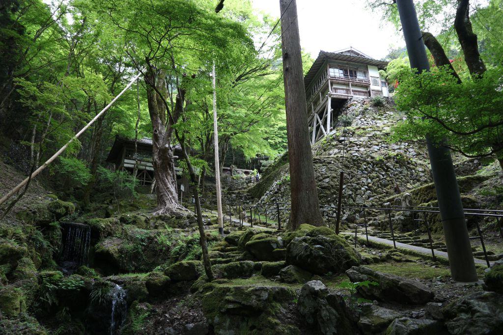 古知谷 阿弥陀寺