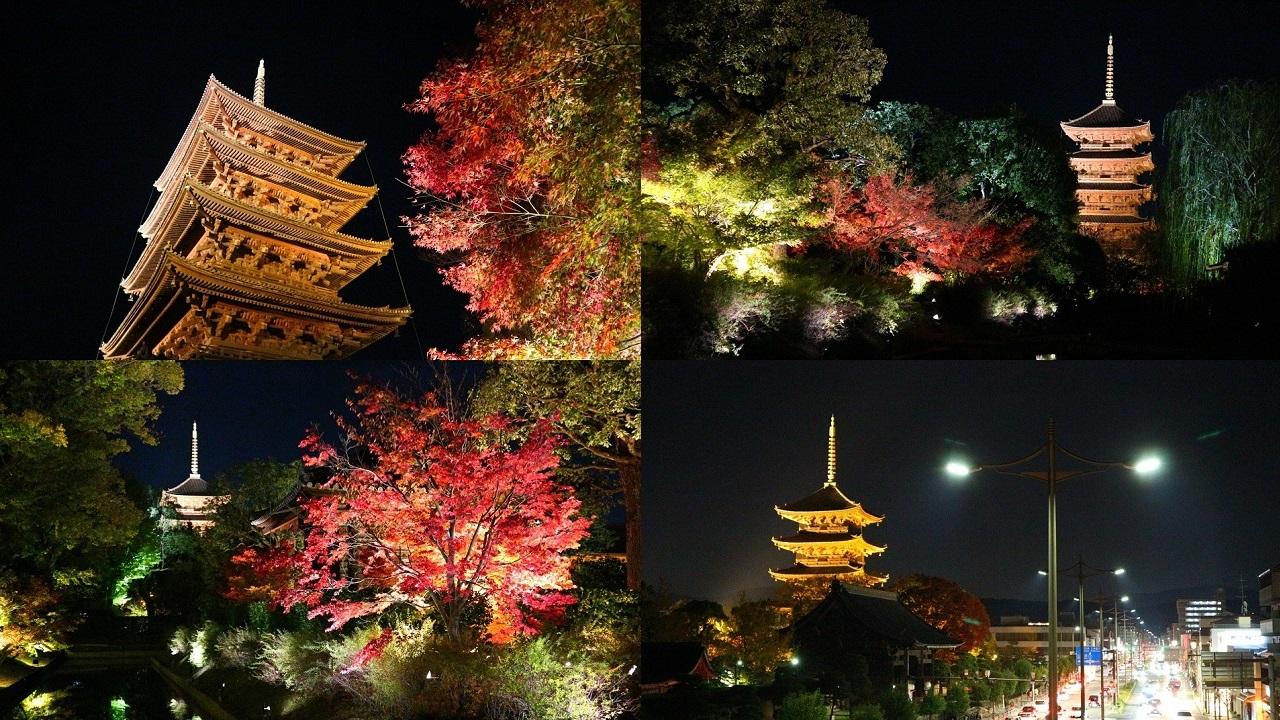 紅葉ライトアップ&限定御朱印~東寺