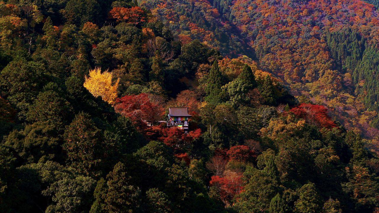 嵐山の隠れ秘境 大悲閣 千光寺