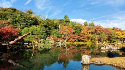 京都 世界文化遺産 天龍寺