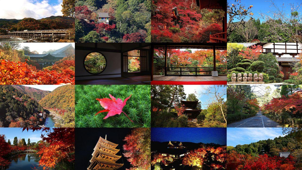 京都でおすすめのインスタ映え紅葉スポット 風景&御朱印まとめ